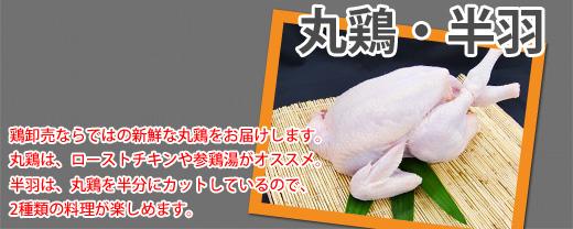 丸鶏・半羽